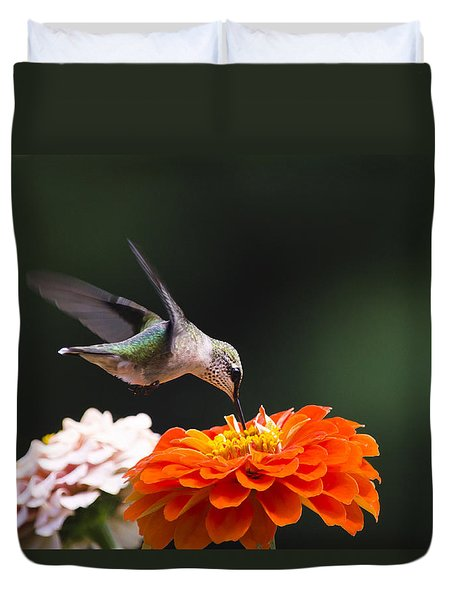 Hummingbird In Flight With Orange Zinnia Flower Duvet Cover