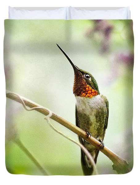 Hummingbird Looking For Love Square Duvet Cover
