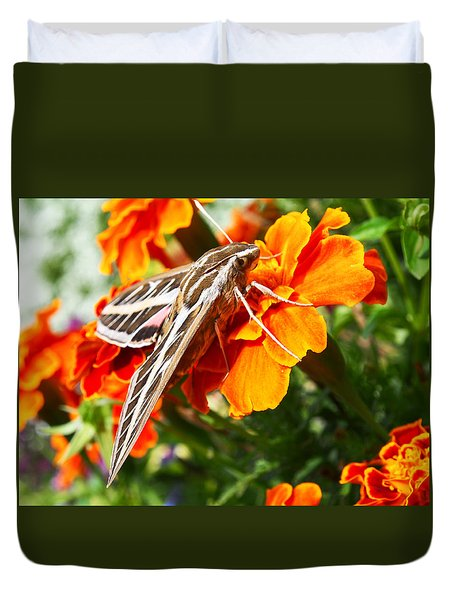 Hummingbird Moth On A Marigold Flower Duvet Cover