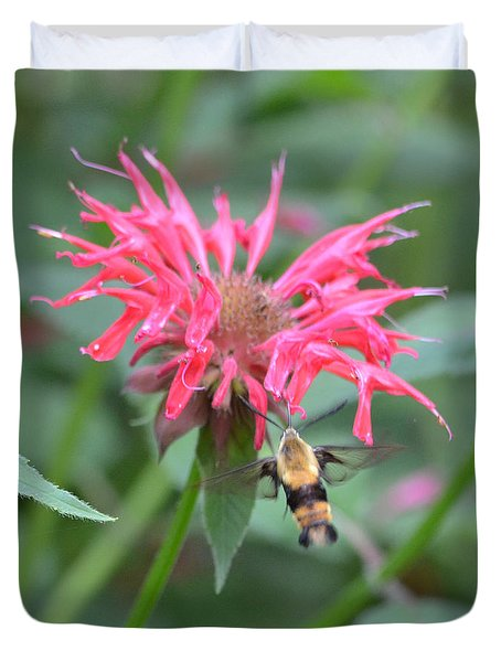 Hummingbird Moth Duvet Cover by Richard Bryce and Family