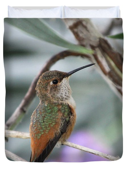 Hummingbird On A Branch Duvet Cover