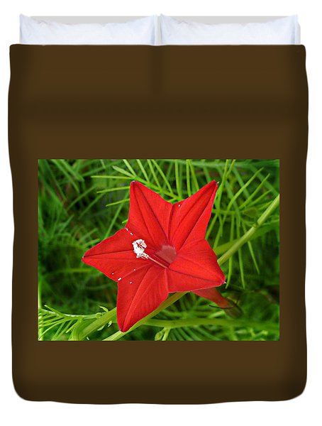 Duvet Cover featuring the photograph Hummingbird Vine by William Tanneberger