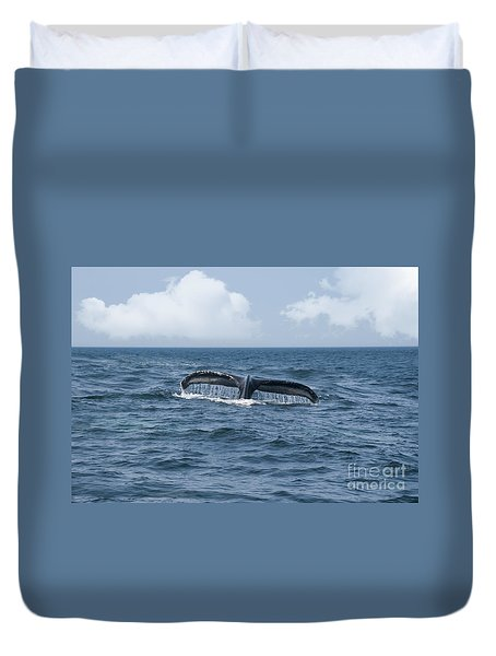 Humpback Whale Fin Duvet Cover by Juli Scalzi