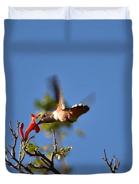 Hungry Hummingbird Duvet Cover