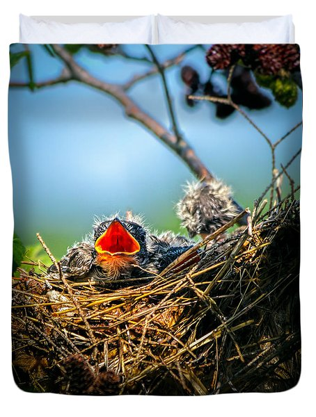 Hungry Tree Swallow Fledgling In Nest Duvet Cover by Bob Orsillo