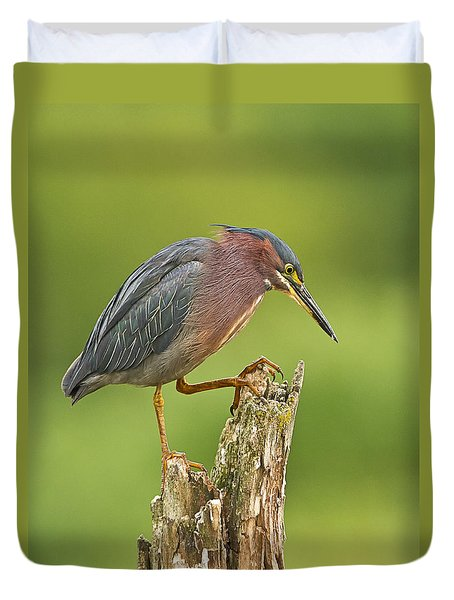 Hunting Green Heron Duvet Cover