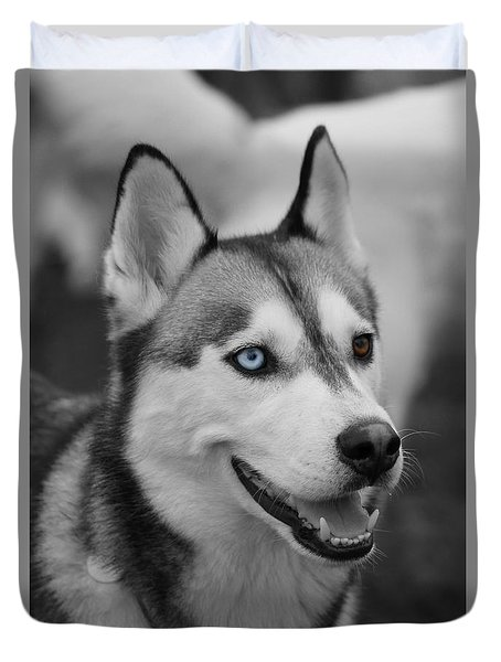 Duvet Cover featuring the photograph Husky Portrait by Vicki Spindler