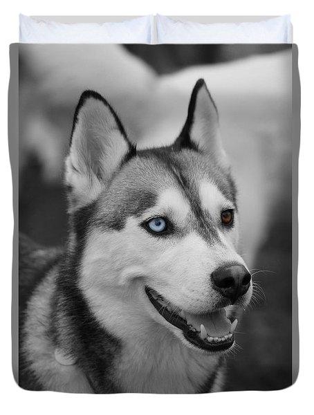 Husky Portrait Duvet Cover by Vicki Spindler