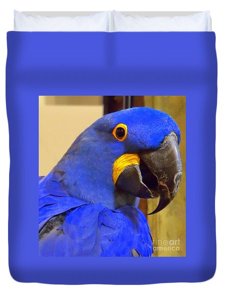 Hyacinth Macaw Portrait Duvet Cover