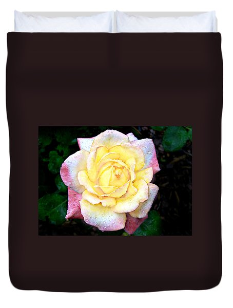 Duvet Cover featuring the photograph Hybrid Tea Rose Cultivator by William Tanneberger
