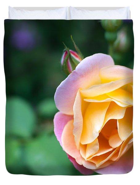 Duvet Cover featuring the photograph Hybrid Tea Rose by Matt Malloy
