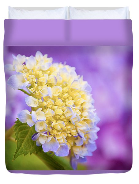 Hydrangea On Purple Duvet Cover
