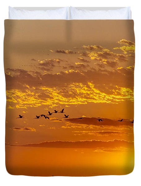 Duvet Cover featuring the photograph Ibis Flyover At Sunset by Rob Graham
