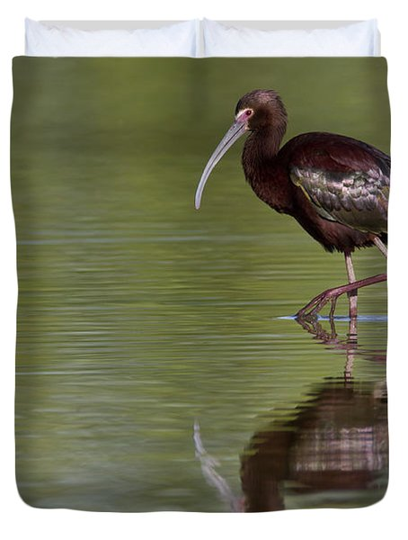 Ibis Reflection Duvet Cover by Bryan Keil