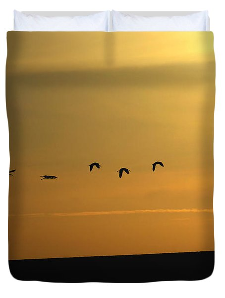 Ibis Sunrise Duvet Cover