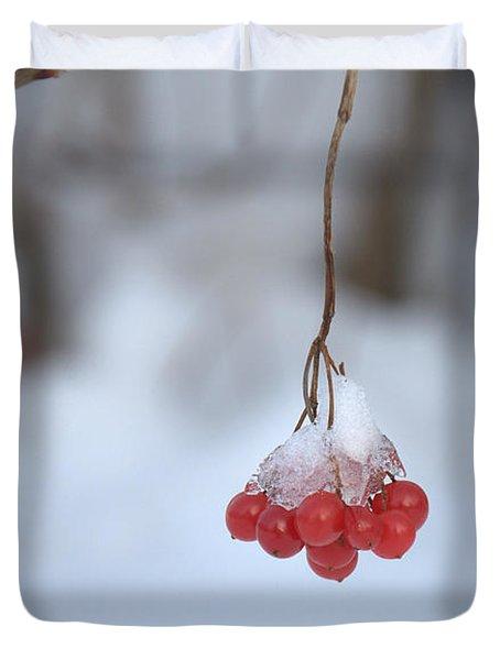 Ice Berries Duvet Cover by Sabine Edrissi