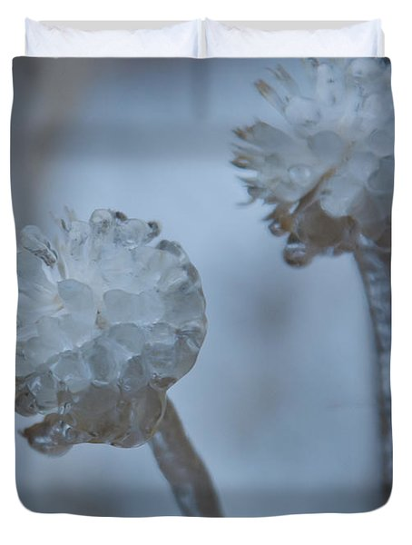 Ice-covered Winter Flowers With Blue Background Duvet Cover