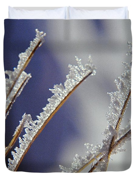 Duvet Cover featuring the photograph Ice Crystals On Fireweed Fairbanks  Alaska By Pat Hathaway 1969 by California Views Mr Pat Hathaway Archives