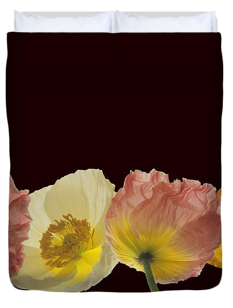 Iceland Poppies On Black Duvet Cover