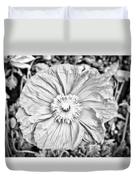 Iceland Poppy In Black And White Duvet Cover