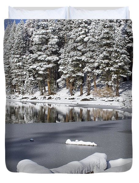 Icy Cold Duvet Cover by Chris Brannen