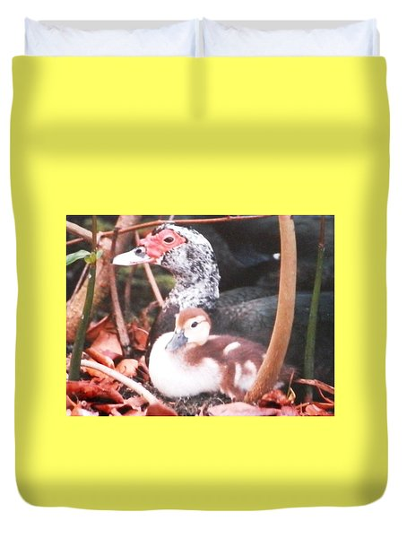 Duvet Cover featuring the photograph Mother And Baby Duckling by Belinda Lee