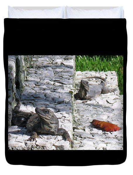 Iguana Bask In The Sun With You Duvet Cover by Patti Whitten