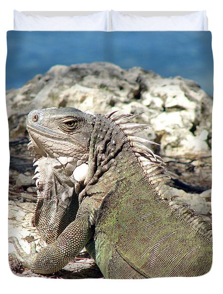 Iguana In The Sun Duvet Cover