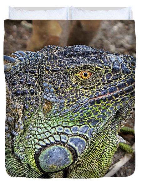 Duvet Cover featuring the photograph Iguana by Olga Hamilton