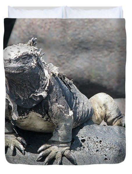 Iguana Or Prehistory Survivor Duvet Cover