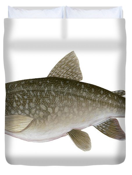 Illustration Of A Lake Trout Salvelinus Duvet Cover by Carlyn Iverson
