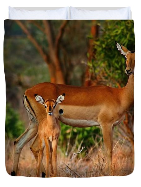 Impala And Young Duvet Cover by Amanda Stadther