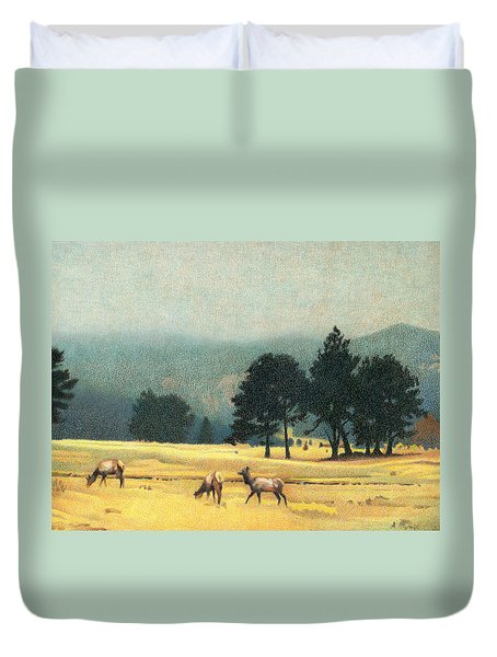 Impression Evergreen Colorado Duvet Cover by Dan Miller