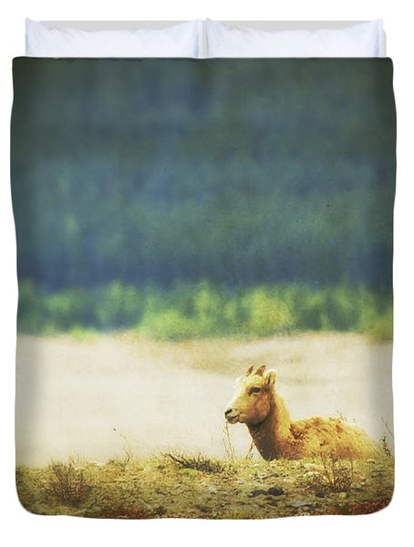 Impressionistic Style Of A Bighorn Duvet Cover by Roberta Murray