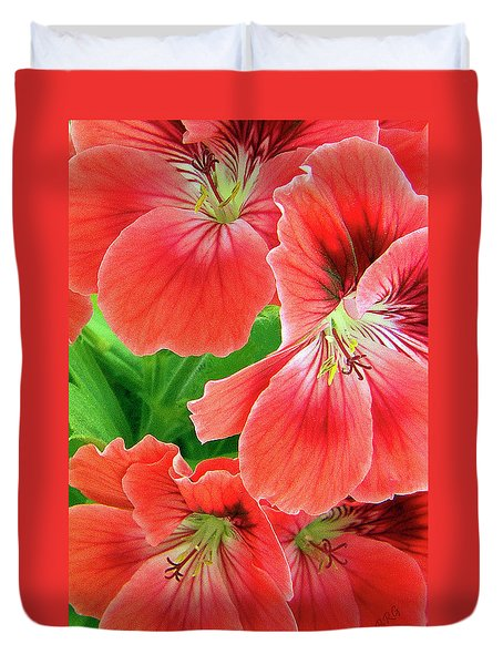 In The Garden. Geranium Duvet Cover by Ben and Raisa Gertsberg