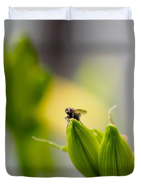 In The Garden - The Champ Duvet Cover