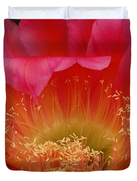 Duvet Cover featuring the photograph In The Pink by Vivian Christopher