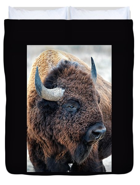 In The Presence Of  Bison - Yes Paint Him Duvet Cover