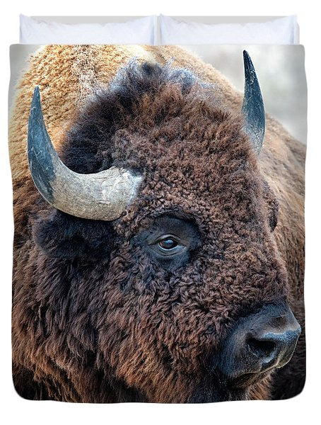 Bison The Mighty Beast Bison Das Machtige Tier North American Wildlife By Olena Art Duvet Cover