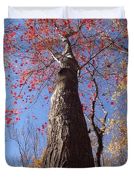 In The Woods 1 Duvet Cover