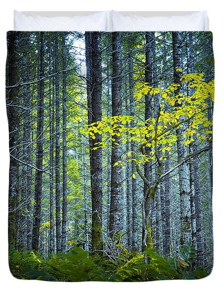 In The Woods Duvet Cover by Belinda Greb