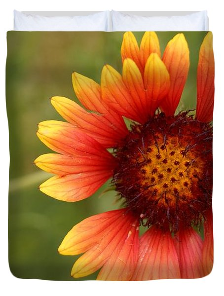 Indian Blanket Flower Duvet Cover