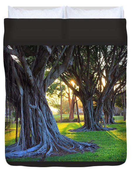 Indian Sunset Duvet Cover