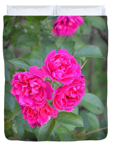 Indiana Roses Duvet Cover by Alys Caviness-Gober