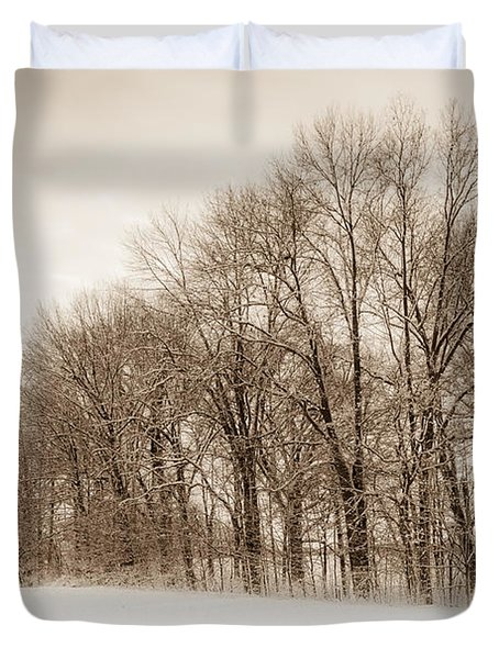 Indiana Winter At Freedom Park - Horizontal Duvet Cover