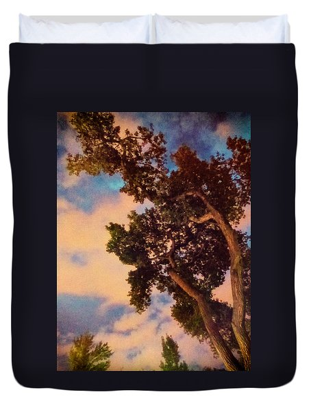 Inspired By Maxfield Parrish Duvet Cover