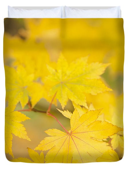 Intensely Yellow Duvet Cover by Anne Gilbert