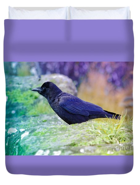 Duvet Cover featuring the photograph Intent Crow by Adria Trail