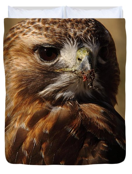Red Tailed Hawk Portrait Duvet Cover by Robert Frederick