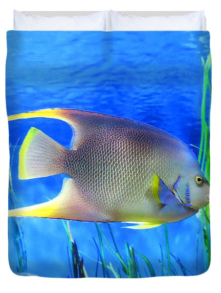 Into Blue - Tropical Fish By Sharon Cummings Duvet Cover by Sharon Cummings